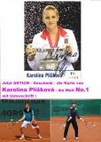 Das Buch mit Trainingsmethoden: Der Weg auf den Tennisthron